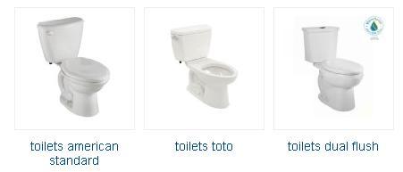 Toilet for small space  Glacier bay toilet parts diagramGlacier bay toilet parts diagram Nebraska  Roseland   Kohler  . Glacier Bay Toilet Parts. Home Design Ideas